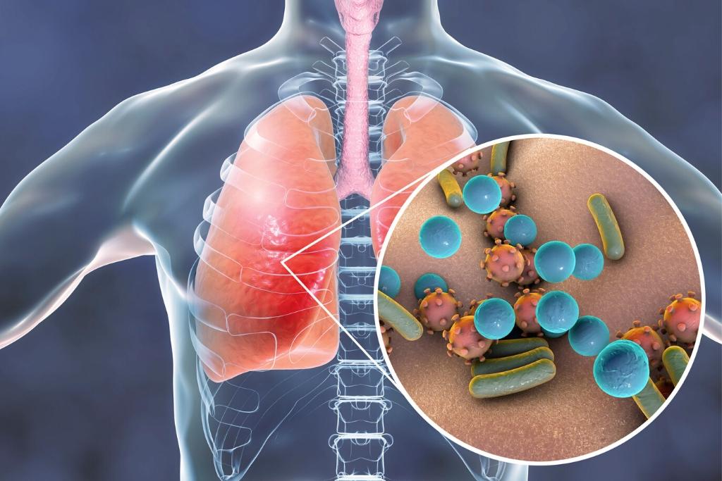 Respiratory System | Skinn Bar